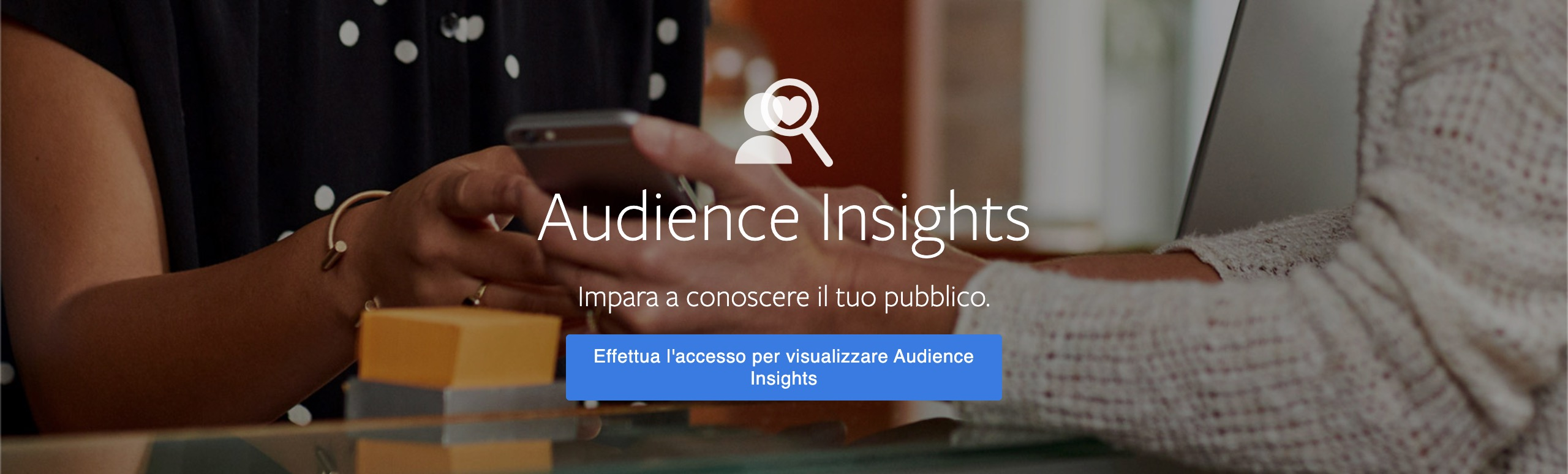 Brand-Facebook-audience-insights